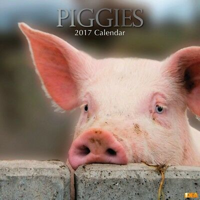 Piggies - 2017 Wall Calendar 16 Months by The Gifted Stationery (J)