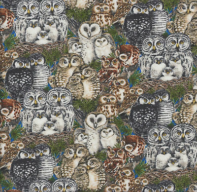 Gorgeous Owls on Blue Birds Wildlife Quilting Fabric FQ or Metre *New*