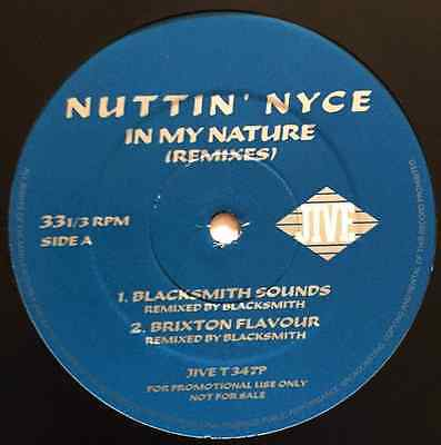 "NUTTIN' NYCE -  In My Nature (Remixes) (12"") (Promo) (G/G)"