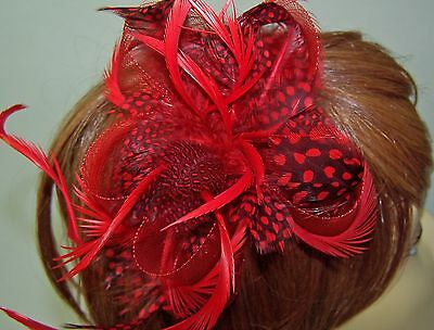 1 Red Feather & 1 Purple Hair Clip Fascinator For Red Hat Lady Of The Society