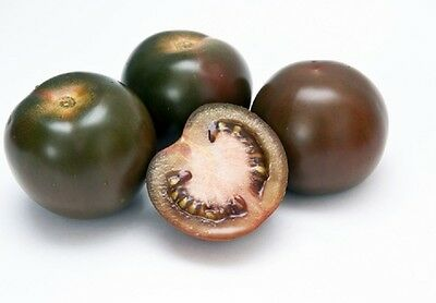 Tomato Black Russian  Appx 300 seeds - Vegetables/Fruits