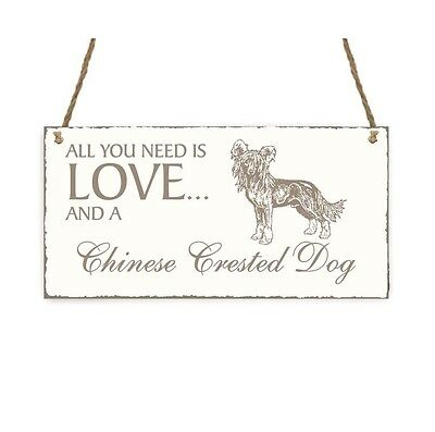 SCHILD « All you need is LOVE and a CHINESE CRESTED DOG » Chinesisch Schopfhund