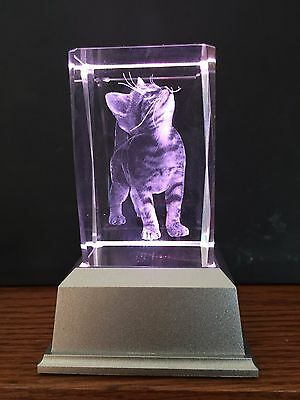 Cat Kitten 3D Laser Crystal With Colour Change Led Base Night Light Ljs-201