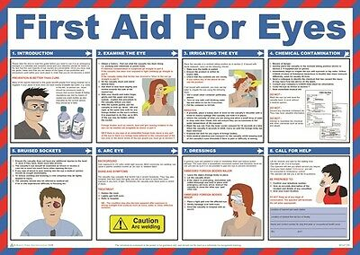 First Aid for Eyes Poster 59cm x 42cm Safety First Aid A602T New