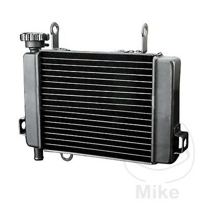 For Honda CBR 125 RW 2011 Radiator