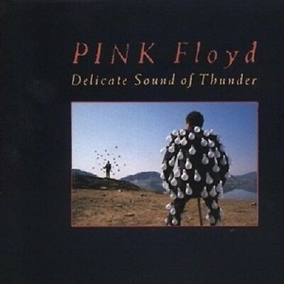 "Pink Floyd ""Delicate Sound Of Thunder"" 2 Cd New+"