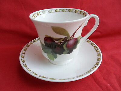 Queen's Hookers Fruit, Teacup & Saucer