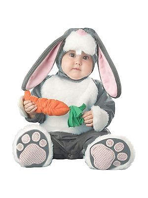 Lil' Bunny Costume Large (18-24 Months) InCharacter Baby 6001