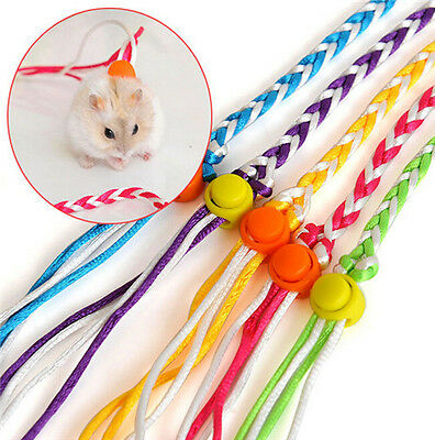 Chic Pets Adjustable Ferret Harness Baby Rabbit Hamster Mouse Leash Leads