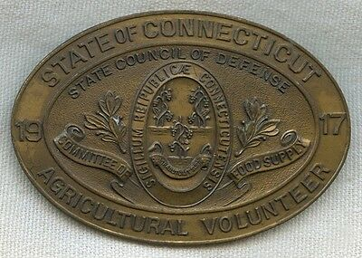 Numbered WWI Connecticut State Council of Defense Agricultural Volunteer Badge
