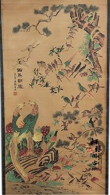 Rare antique chinese museum painting scroll/Birds Chaoyang/百鸟朝凤