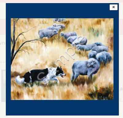 "BORDER COLLIE  -  Decorative/Refrigerator Magnet by Maystead / 2"" x 3"""