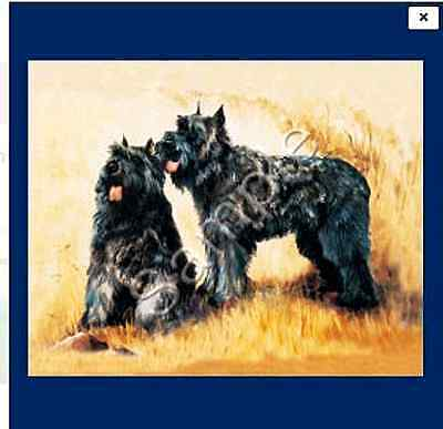 "BOUVIER des FLANDRES - Decorative/Refrigerator Magnet by Maystead / 2"" x"
