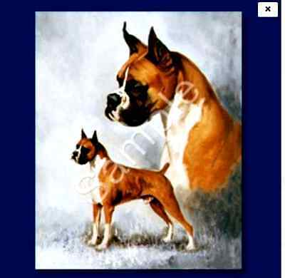 "BOXER - Decorative/Refrigerator Magnet by Maystead / 2"" x"