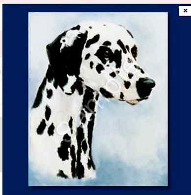 "DALMATION - Decorative/Refrigerator Magnet by Maystead / 2"" x"