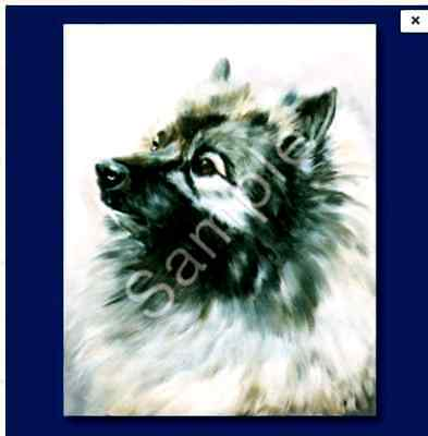 "KEESHOND - Decorative/Refrigerator Magnet by Maystead / 2"" x"
