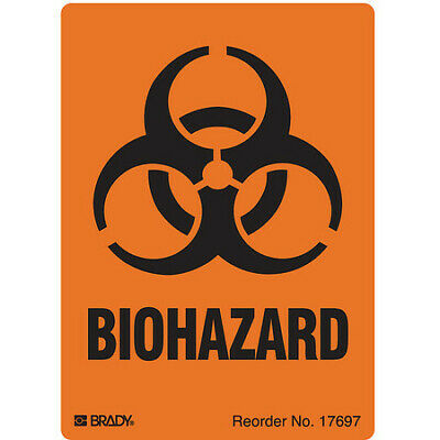 Warning Label,4 In. H,2-7/8 In. W,PK500 BRADY 17697LS