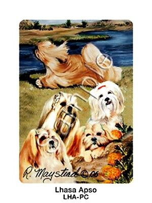 LHASA APSO Deck of Playing Cards by Maystead