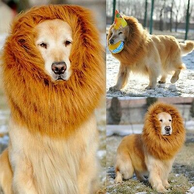 Pet Costume Lion Perruque Chien Festival de vêtements d'Halloween Dress up XL