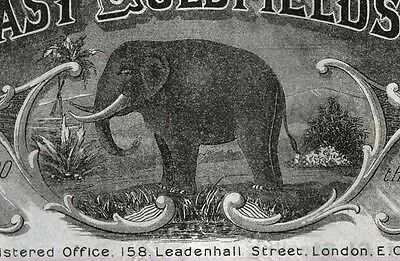 1902 Ivory Coast Goldfields, Limited - Elephant Vignette