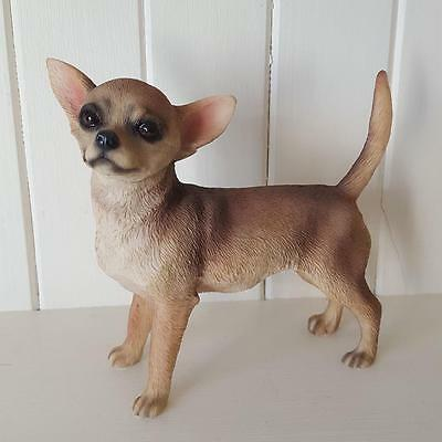Standing Chihuahua Dog Ornament Gift Boxed By Leonardo