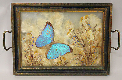 Butterfly Tray, Glass & Wood with Handles