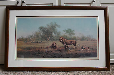 Rare David Shepherd - Evening In The Luangwa - signed, limited edition print.