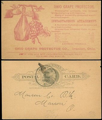 1890 IRONTON OH CDS, Red ILLUSTRATED Advertising For OHIO GRAPE PROTECTOR, #UX9!