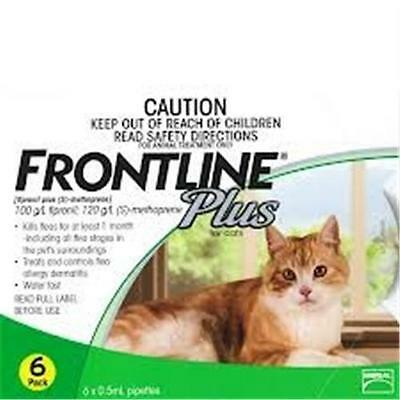 Frontline Plus flea treatment for Cats 6 doses Plus single FREE DOSE!