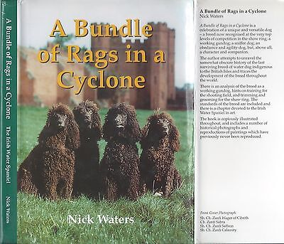 Dog Book A BUNDLE OF RAGS IN A CYCLONE Irish Water Spaniel HBDJ/UK 1998 RARE