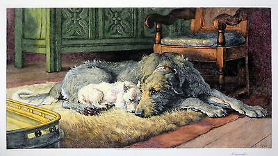 DEERHOUND IRISH WOLFHOUND WEST HIGHLAND WHITE TERRIER DOG ART ENGRAVING Dicksee