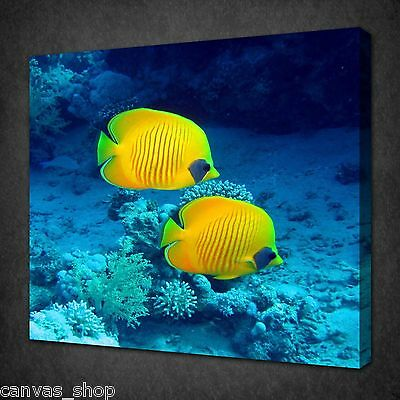Yellow Butterfly Fish In The Ocean Wall Art Picture Canvas Print Ready To Hang