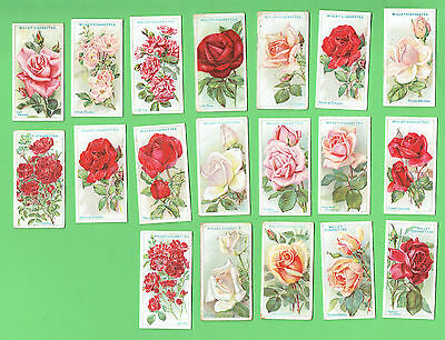 #D262.  19 ROSES  CIGARETTE  CARDS - 1926  W.D. & H.O. Wills