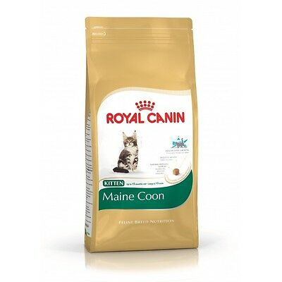 Croquettes pour chats Royal Canin Kitten Maine Coon 36 Sac 4 kg