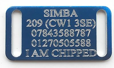 Personalised Engraved Blue Slide On Slider Small Dog/Cat Pet ID Tag 44x22mm