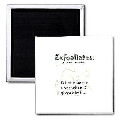 """Exfoaliates: ""What a horse does when it gives birth...""/ 2"" square HORSE MAGNET"