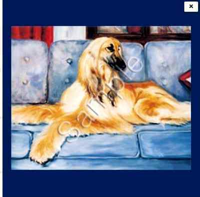 "AFGHAN HOUND  Decorative/Refrigerator Magnet by Maystead / 2"" x 3"""