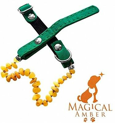 Luxury Magical Amber Flea,Tick And Pain Relief Collar For Pets / 100% - 100% -
