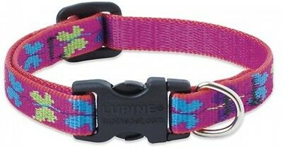 Lupine Wing It Patterned Adjustable Dog Collar For Small Dogs, 1/2-inch/ 8 -