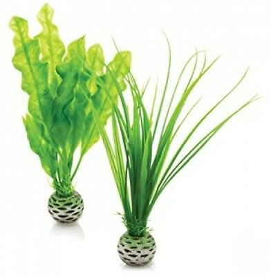 BiOrb Easy Plant, Pack Of 2, Green