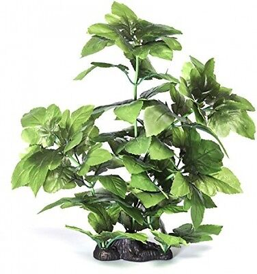 Pistachio Pet - Aquarium Plant 16 /40cm Lizard's Tail With Base