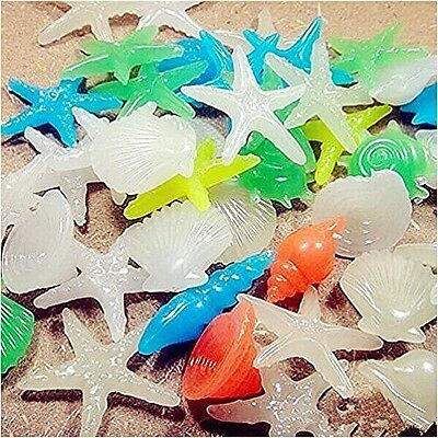 Namsan Colorful Bright Glow In The Dark Luminous Conch Shell,Starfish For Fish