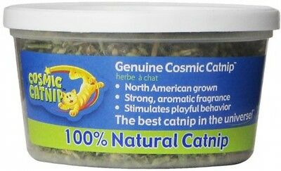 OurPets Catnip Cup Cat Herb, 0.5 Oz