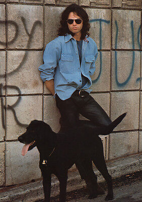 "The Doors Red Jim Morrison with Black Dog Poster 23.5"" x 33""  UK Import"