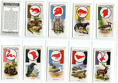 cigarette cards boy scouts 1933 full set