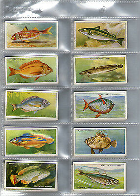 cigarette cards sea fishes 1935 full set