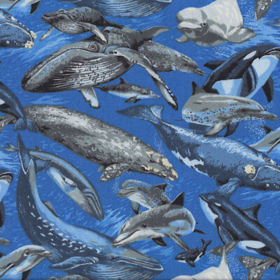 Whales Dolphins Swimming in Ocean Wildlife Quilt Fabric FQ or Metre *New*