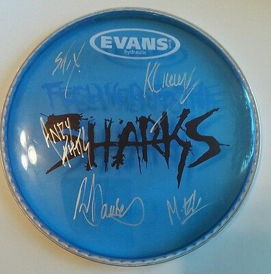 Sweet! FEED HER TO THE SHARKS Signed Autographed Drumhead Awesome! Logo & All