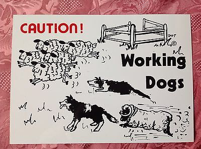 PLASTIC DOG  SIGN -  CAUTION WORKING DOGS (Border Collie)