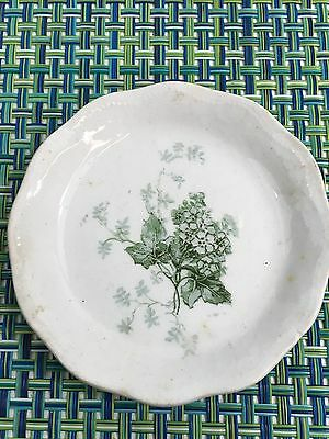 """Antique  Ironstone Butter Pat With Green Leaf Design 3"""" English?"""